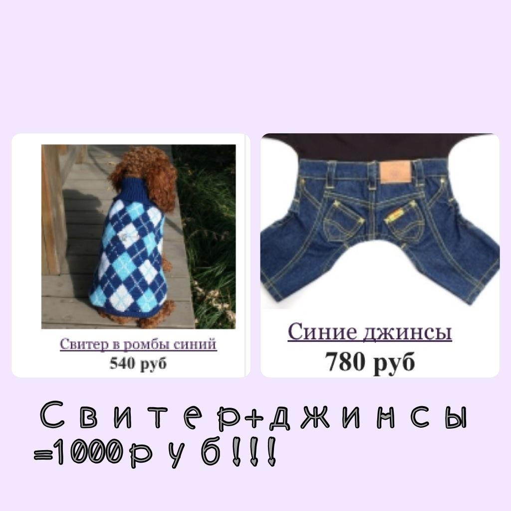 Одежда для йорков купить